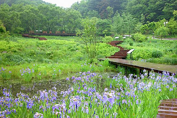 평강식물원